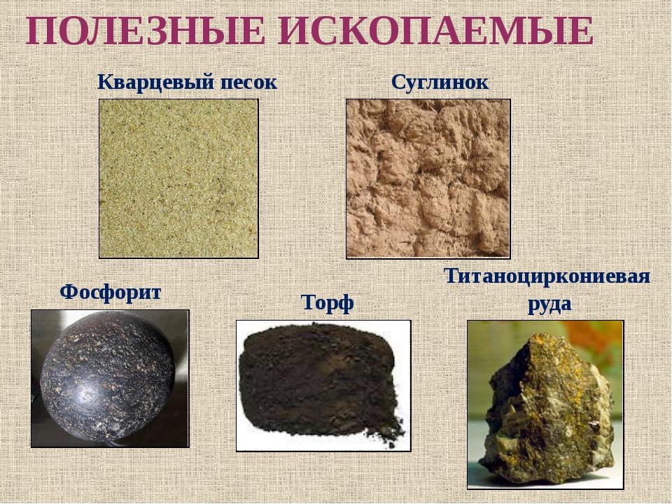 ПОЛЕЗНЫЕ ИСКОПАЕМЫЕ Кварцевый песок Суглинок Фосфорит Титаноциркониевая руда...