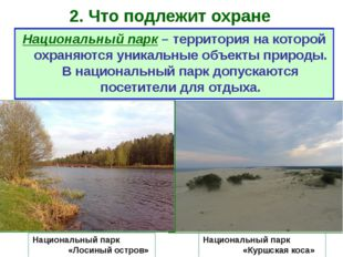 2. Что подлежит охране Национальный парк «Куршская коса» Национальный парк –