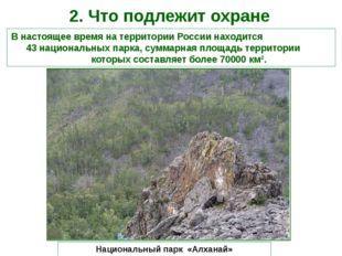 2. Что подлежит охране В настоящее время на территории России находится 43 на