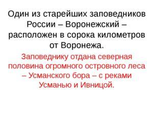 Один из старейших заповедников России – Воронежский – расположен в сорока кил