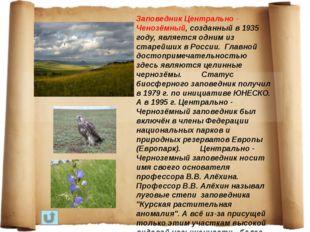 Заповедник Центрально - Ченозёмный, созданный в 1935 году, является одним из