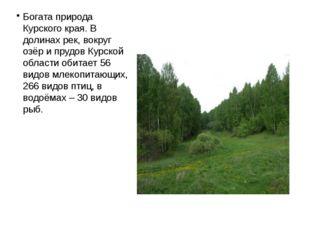 Богата природа Курского края. В долинах рек, вокруг озёр и прудов Курской обл