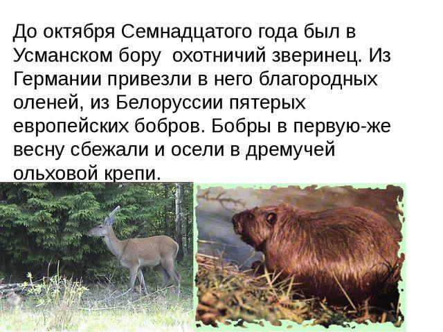 До октября Семнадцатого года был в Усманском бору охотничий зверинец. Из Герм...