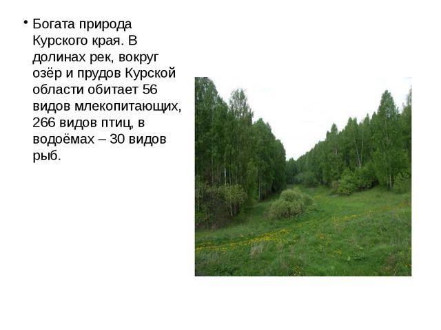Богата природа Курского края. В долинах рек, вокруг озёр и прудов Курской обл...