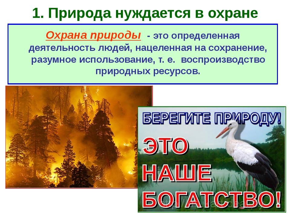 1. Природа нуждается в охране Охрана природы - это определенная деятельность...