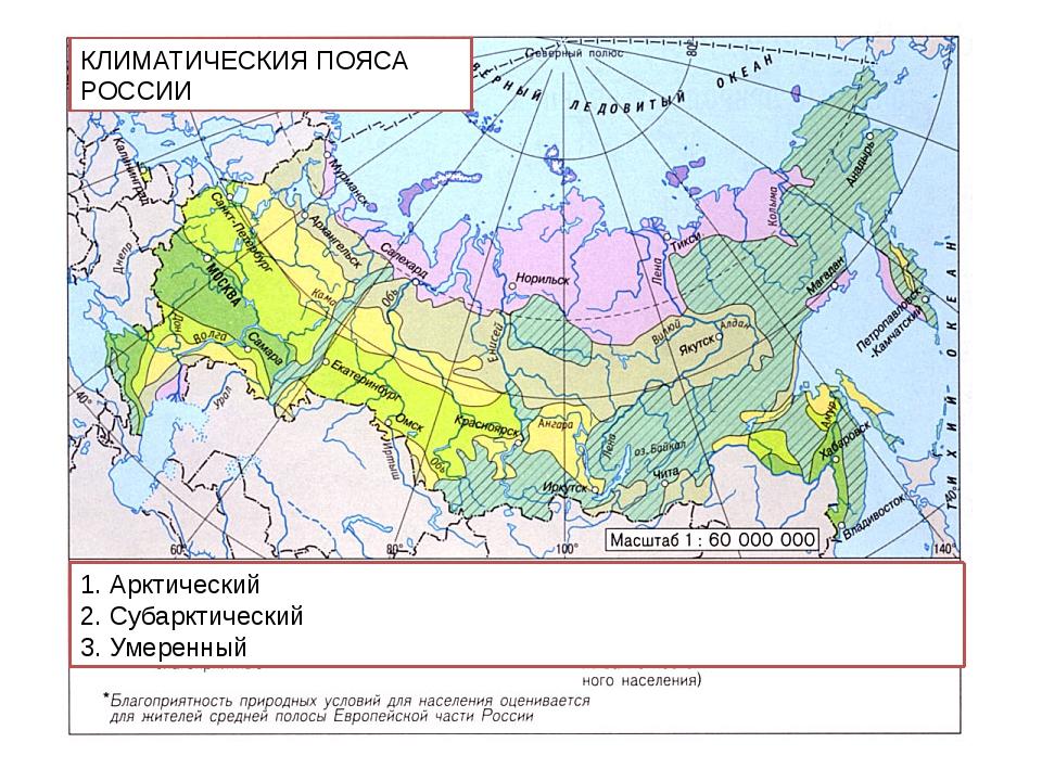 КЛИМАТИЧЕСКИЯ ПОЯСА РОССИИ 1. Арктический 2. Субарктический 3. Умеренный