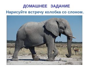 ДОМАШНЕЕ ЗАДАНИЕ Нарисуйте встречу колобка со слоном.