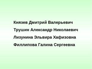 Князев Дмитрий Валерьевич Трушин Александр Николаевич Лизунина Эльвира Хафиз