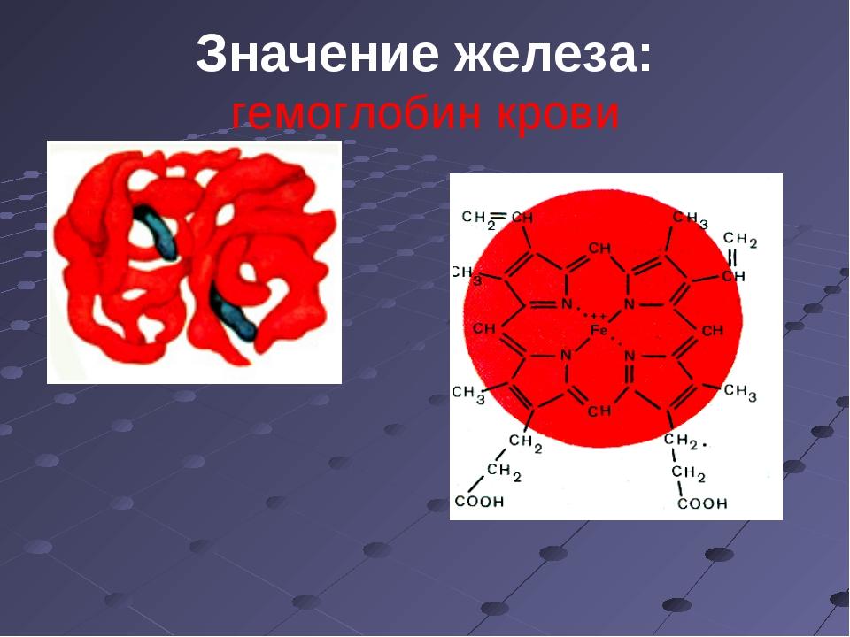 Значение железа: гемоглобин крови