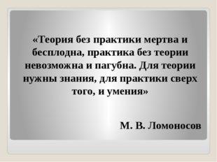 «Теория без практики мертва и бесплодна, практика без теории невозможна и па