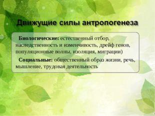 Биологические: естественный отбор, наследственность и изменчивость, дрейф ген