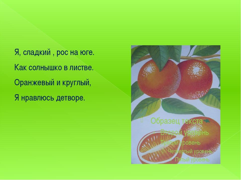 Я, сладкий , рос на юге. Как солнышко в листве. Оранжевый и круглый, Я нравл...
