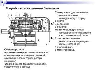 Устройство асинхронного двигателя Статор – неподвижная часть двигателя – имее