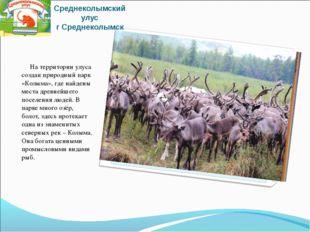 Среднеколымский улус г Среднеколымск На территории улуса создан природный пар