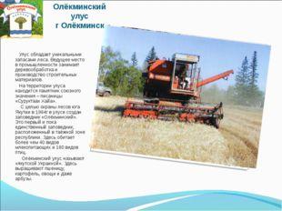 Олёкминский улус г Олёкминск Улус обладает уникальными запасами леса. Ведущее
