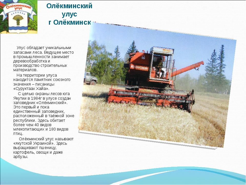 Олёкминский улус г Олёкминск Улус обладает уникальными запасами леса. Ведущее...