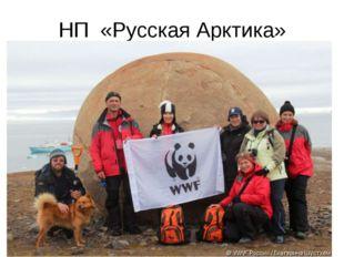 НП «Русская Арктика»