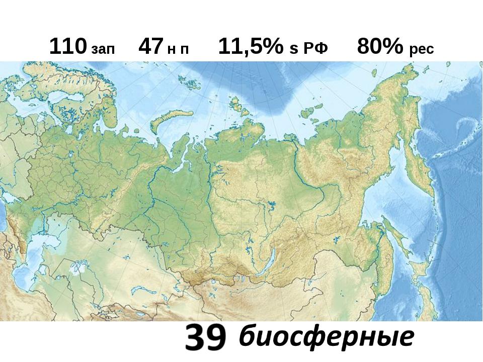 110 зап 47 н п 11,5% s РФ 80% рес