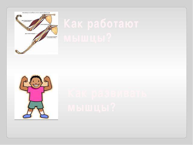 Как работают мышцы? Как развивать мышцы?