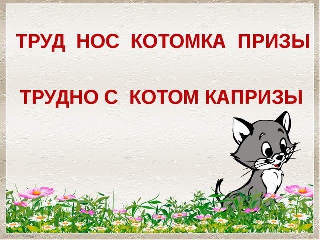 ТРУД НОС КОТОМКА ПРИЗЫ ТРУДНО С КОТОМ КАПРИЗЫ FokinaLida.75@mail.ru