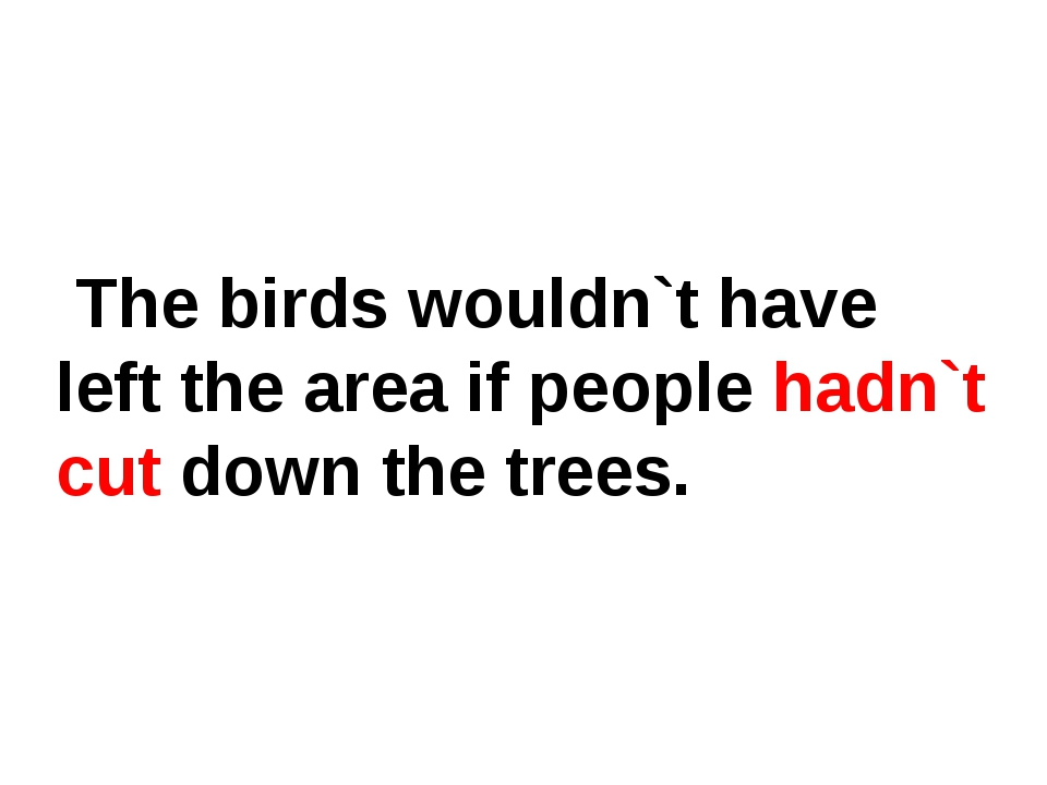 The birds wouldn`t have left the area if people hadn`t cut down the trees.