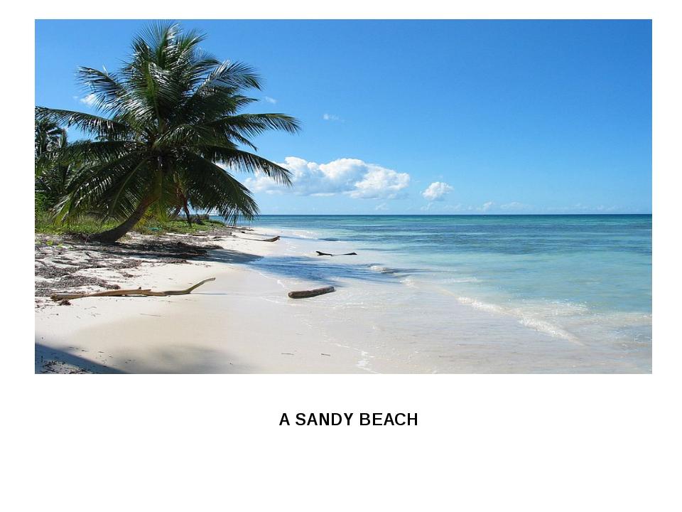 AA SANDY BEACH