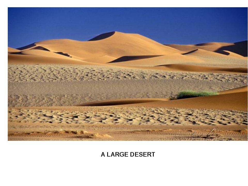 A LARGE DESERT