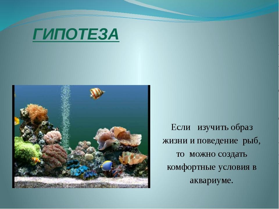 ГИПОТЕЗА Если изучить образ жизни и поведение рыб, то можно создать комфортны...