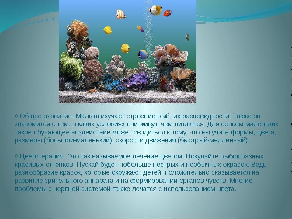 ◊ Общее развитие. Малыш изучает строение рыб, их разновидности. Также он знак...