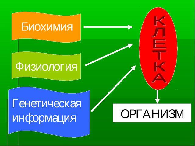 Биохимия Физиология Генетическаяинформация ОРГАНИЗМ