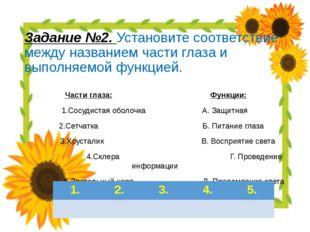 Задание №2. Установите соответствие между названием части глаза и выполняемой