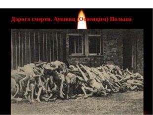 Дорога смерти. Аушвиц (Освенцим) Польша