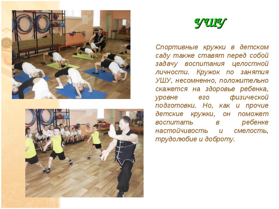 УШУ Спортивные кружки в детском саду также ставят перед собой задачу воспитан...
