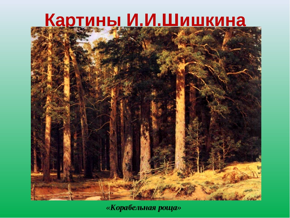 Картины И.И.Шишкина » «Корабельная роща»