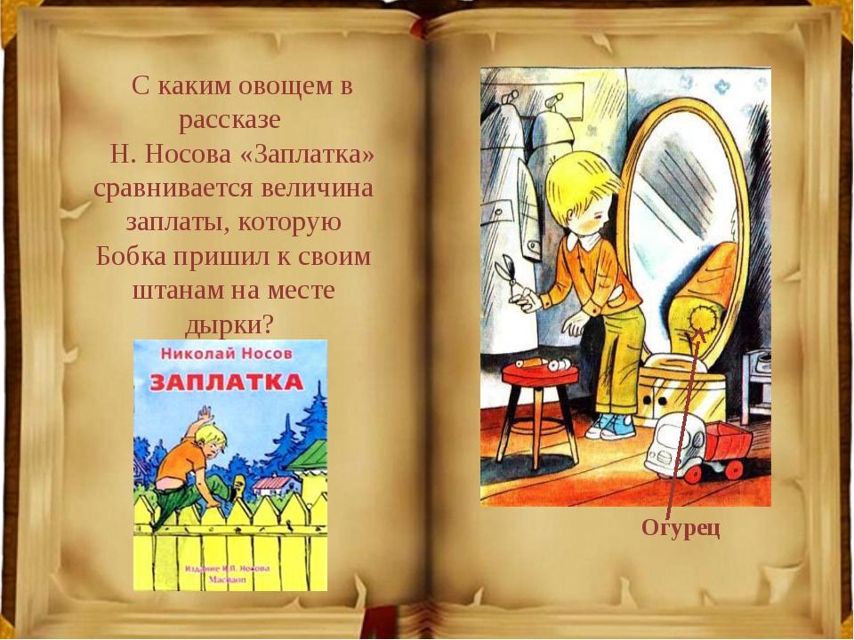 Рассказ Носова Мишкина каша