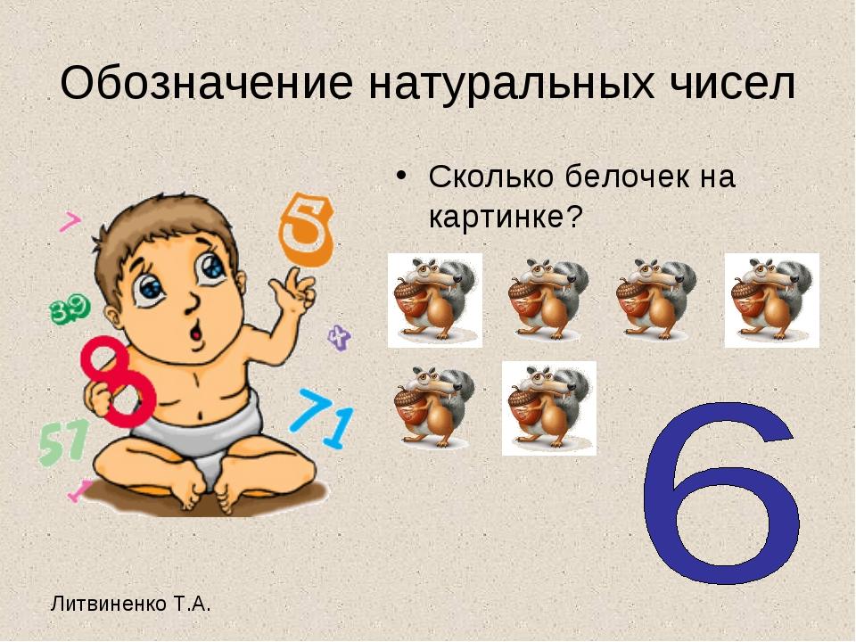 Обозначение натуральных чисел Сколько белочек на картинке?