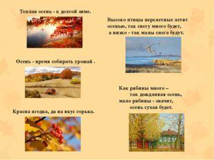 Теплая осень - к долгой зиме. Осень - время собирать урожай . Красна ягодка,