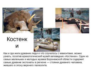 Костенки Как и где жили древние люди и что случилось с мамонтами, можно узнат