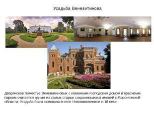 Усадьба Веневитинова Дворянское поместье Веневитиновых с каменным господским