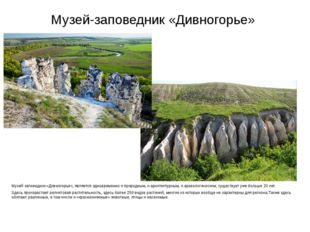 Музей-заповедник «Дивногорье» Музей-заповедник «Дивногорье», является одновре
