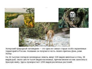 Хоперский заповедник Хоперский природный заповедник— это одна из самых стары