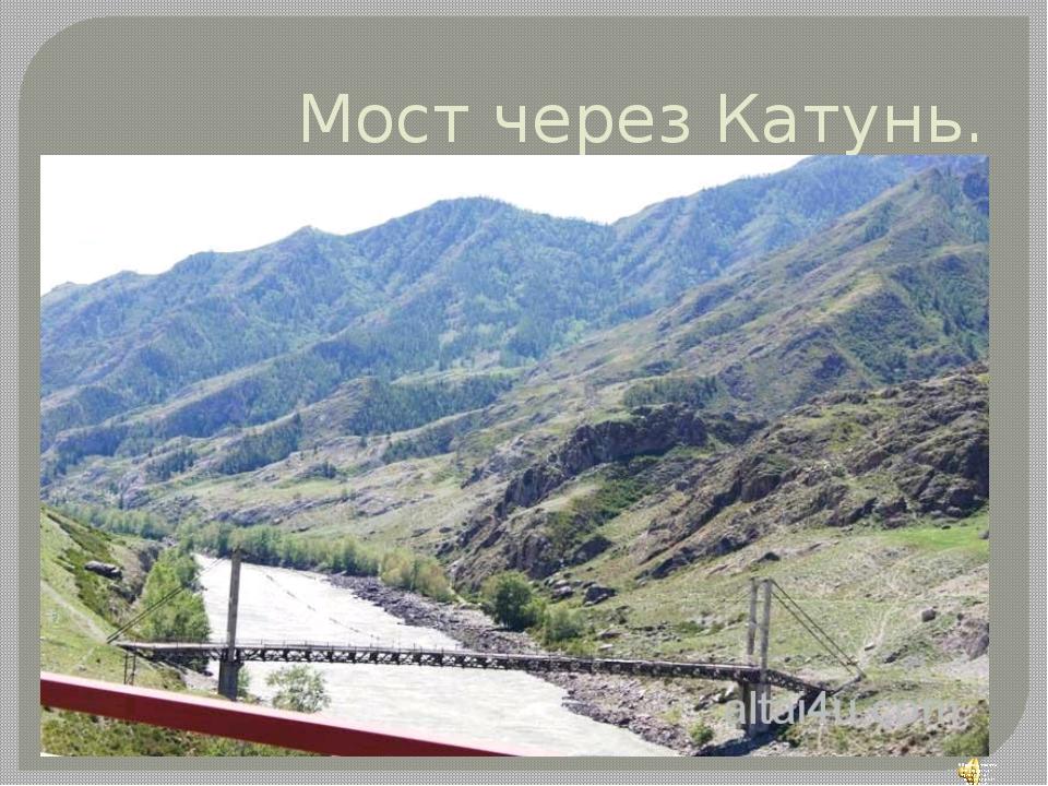 Мост через Катунь.