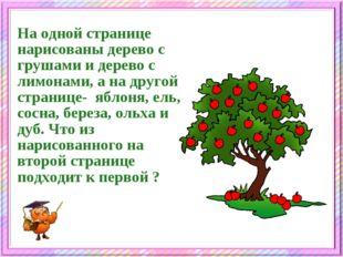 На одной странице нарисованы дерево с грушами и дерево с лимонами, а на друго