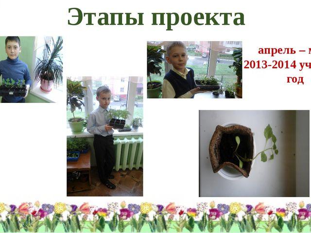 Этапы проекта апрель – май 2013-2014 учебный год