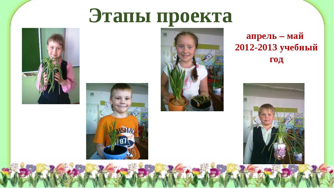 Этапы проекта Этапы проекта апрель – май 2012-2013 учебный год