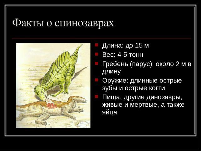Длина: до 15 м Вес: 4-5 тонн Гребень (парус): около 2 м в длину Оружие: длинн...