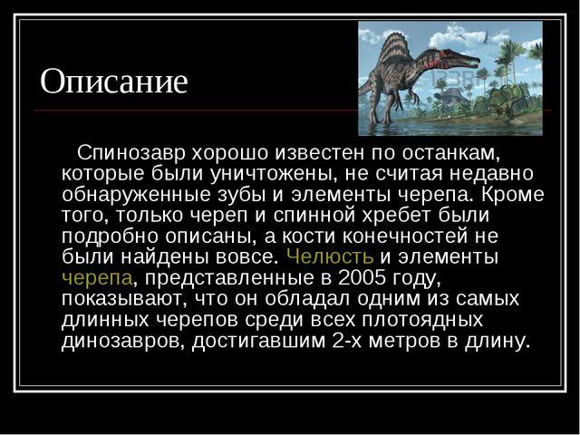 Описание Спинозавр хорошо известен по останкам, которые были уничтожены, не с...