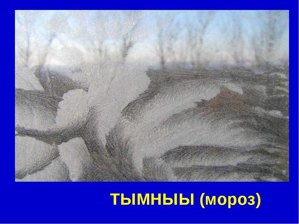 ТЫМНЫЫ (мороз)