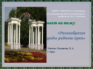 МБОУ- СОШ № 24 с углубленным изучением отдельных предметов гуманитарного про