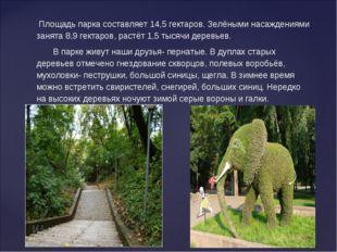 Площадь парка составляет 14,5 гектаров. Зелёными насаждениями занята 8,9 гек